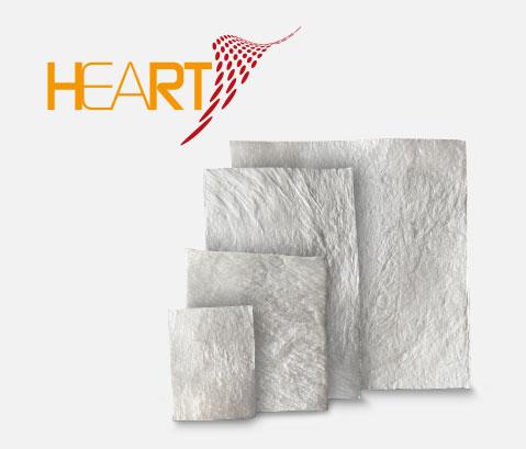 Heart lamine in pericardio Bioteck