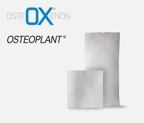 Osteoxenon lamine corticali